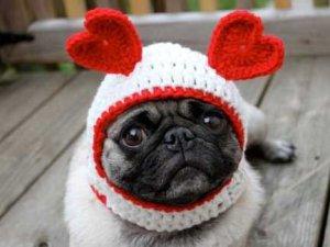 dog-etsy-valentines-day